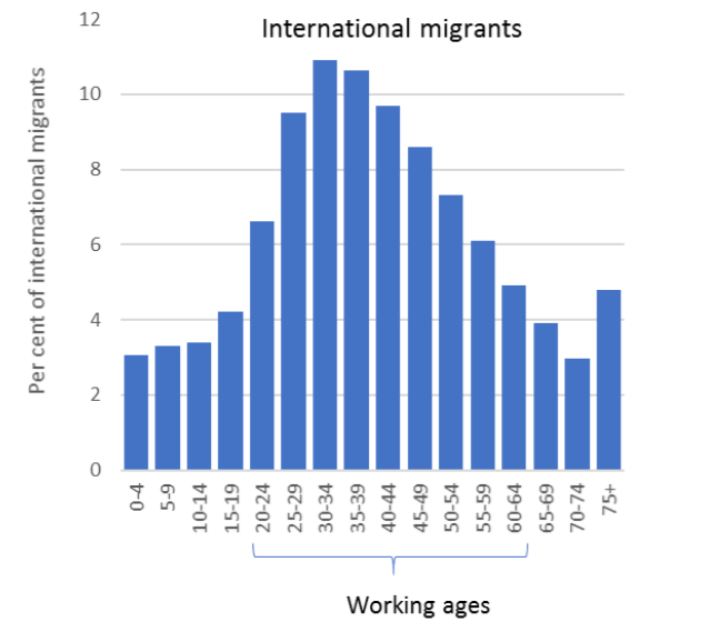 A chart showing international migrants by age group
