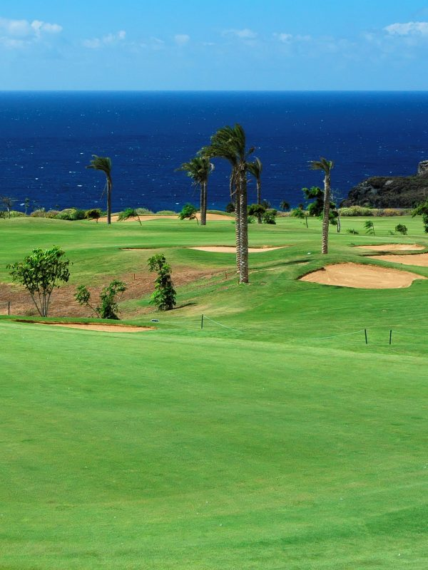 Santa Maria Golf club - a view of the course looking out to the sea, with palm trees